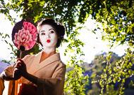 Geisha-0150.jpg